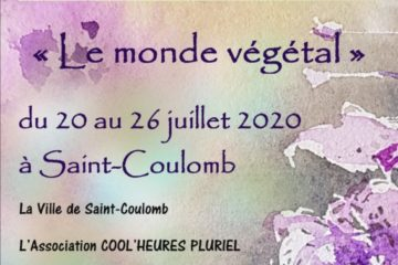 concours peinture st coulomb